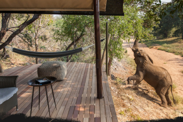 Garonga Tented Camp used on the longer rides