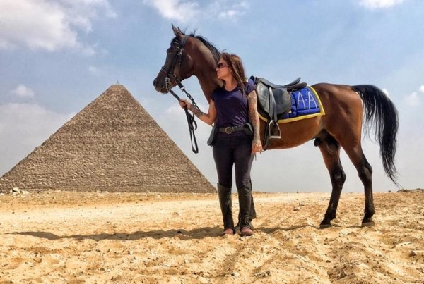 Horse and pyramids