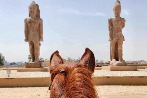 The Colossi of Memnon through a horses ears