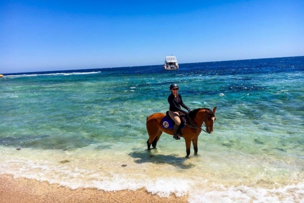 Horse riding in the Red Sea in Egypt