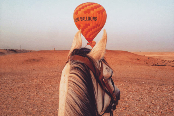 Horse and hot air balloon