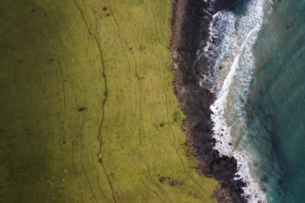 Arial view of grass and sea