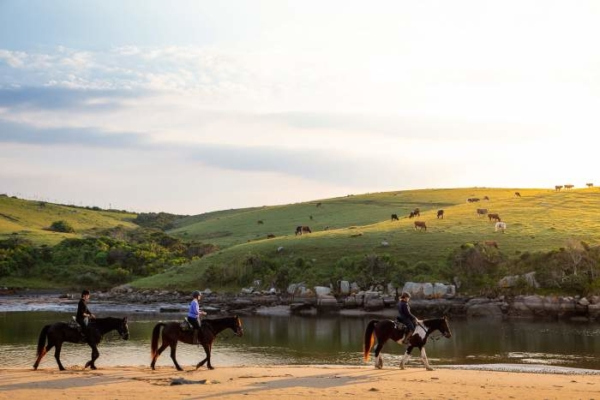Horse riding next to river