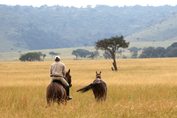 Finding peace in the veld