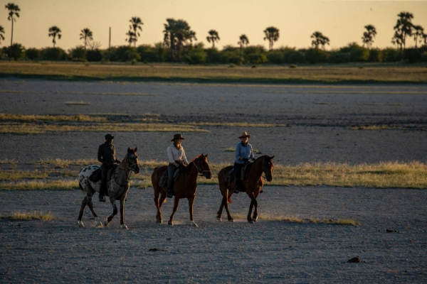 Horse riders on salt pans in evening light