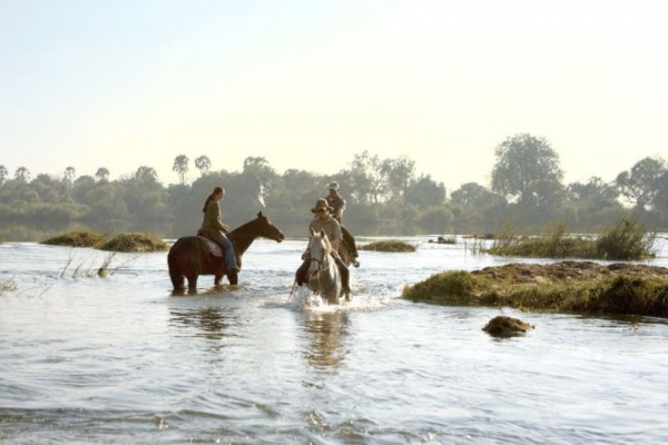 Horse riding in river
