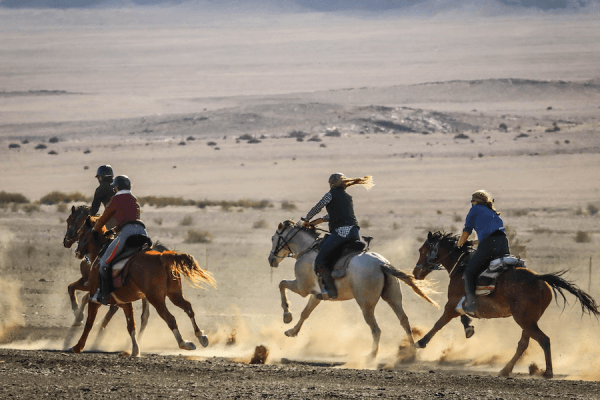 Galloping horses in desert