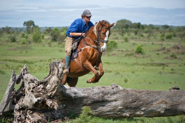 Horse and rider jumping over fallen log