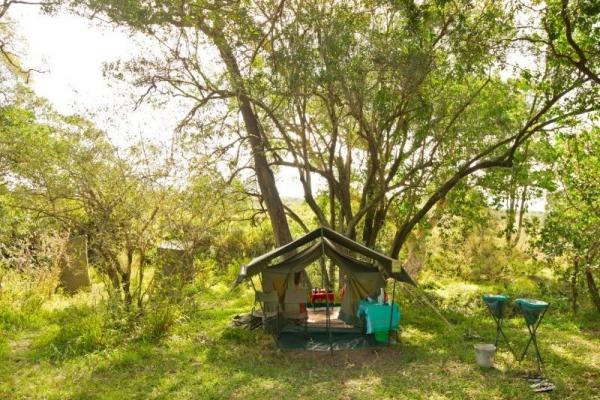 Safari camp in Kenya