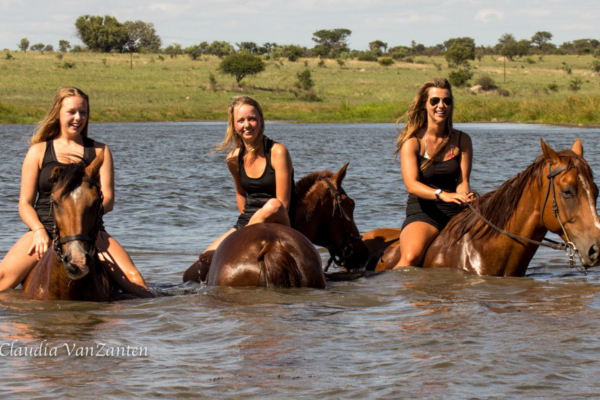 girls on horseback swimming in dam