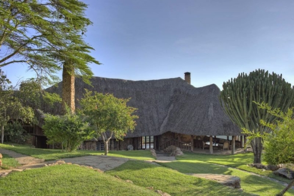 Thatched lodge in Africa