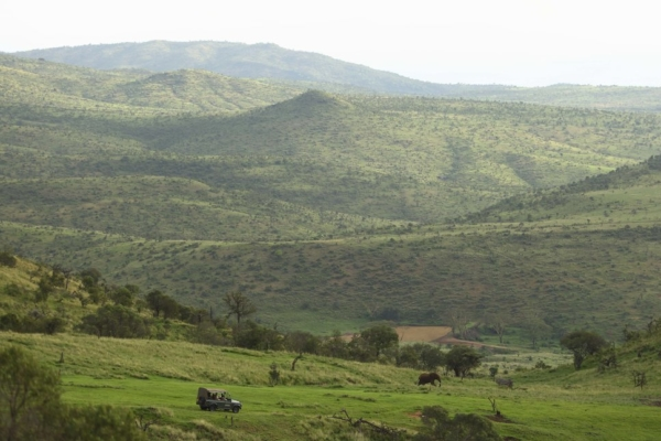Game Drives take you farther afield