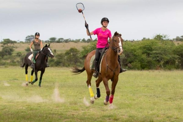 Polo in Zimbabwe