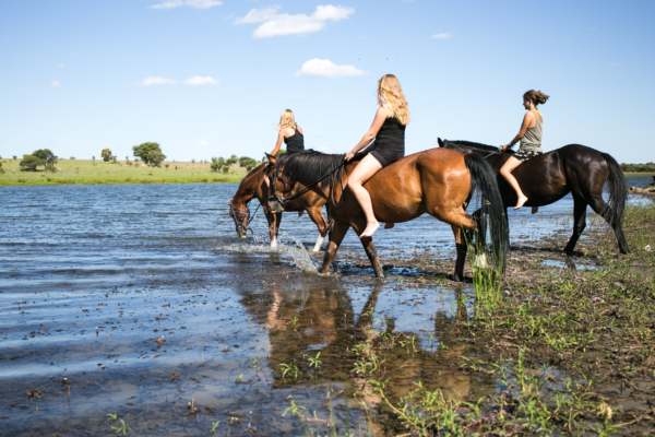 Horseback swims