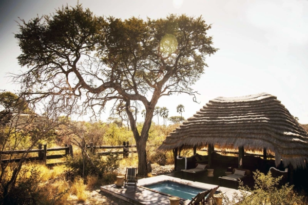Thatched lapa and swimming pool under tall tree