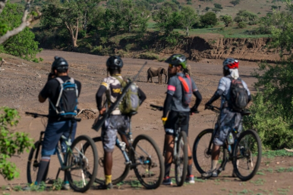 Cycling with elephants in Africa