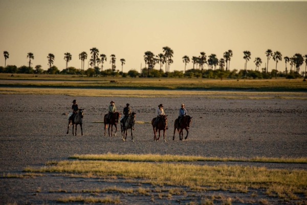 Horse riding on salt pans with tall palm trees