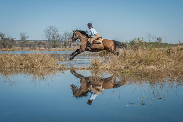 Horse jumping over water