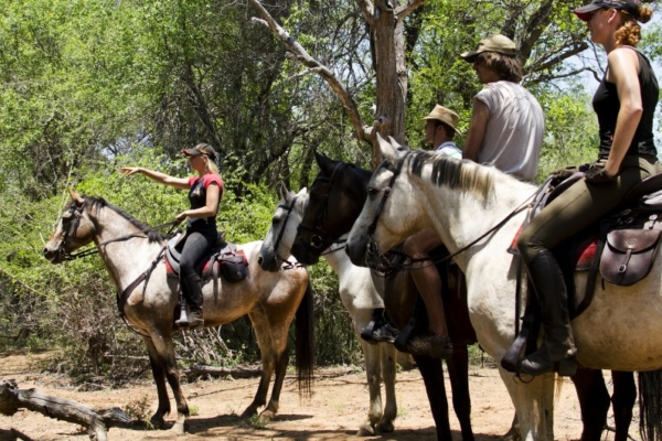 Great trail rides