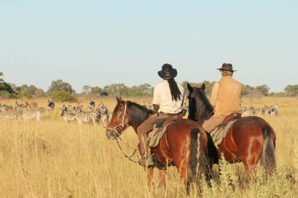 Two horseback riders watching herd of zebra
