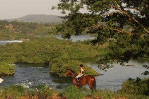 Horse and rider looking out over the Nile River
