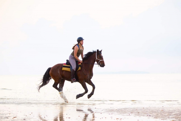 Woman galloping horse on beach
