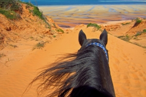Red sand dunes lead to azure waters