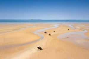 Horses riding on swirling sea flats