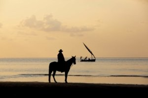 Silhouette of horseback rider with dhow inbackgourng
