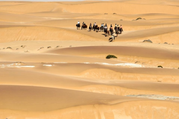 Ride in the world's oldest desert