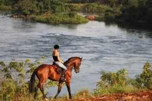 Woman riding bay horse along the Nile River