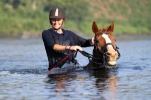 Smiling Horse swimming in River Nile