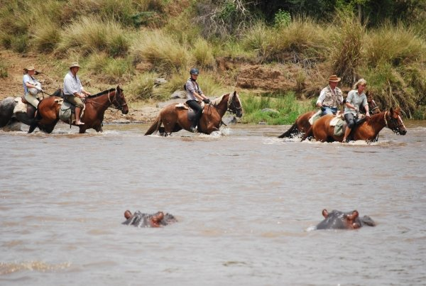 Horseback safari crossing river with hippos