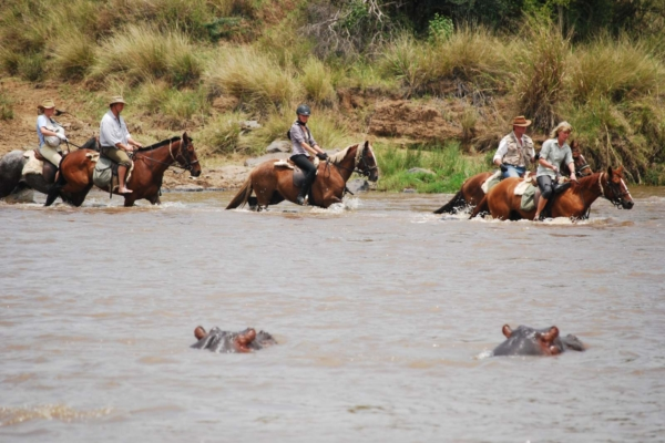 River crossings complete with hippo