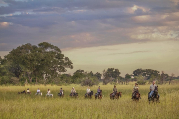 Horse Riders in long grass on African Safari