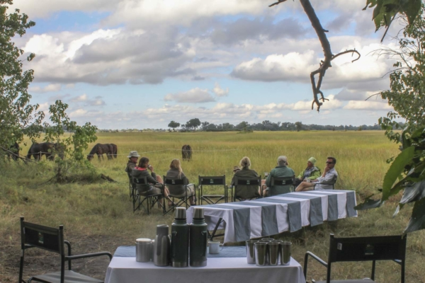 Safari lunch in bush with horses in background