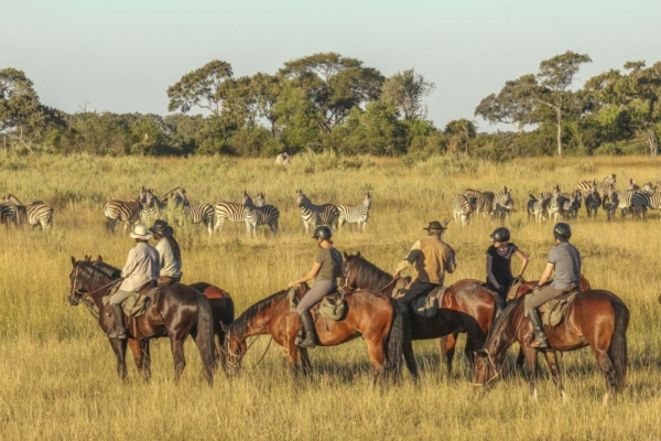 Group of horse riders watching zebra herd