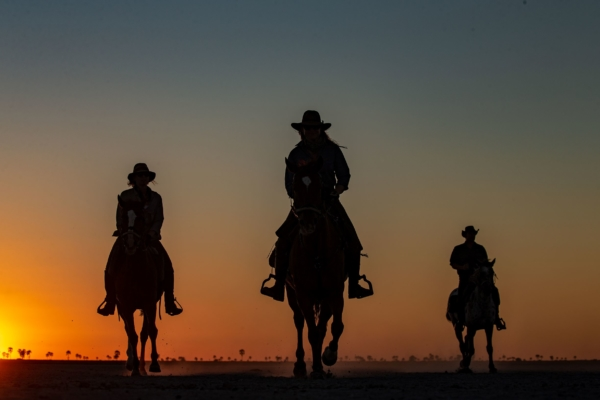 Three horse riders in cowboy hats at sunset