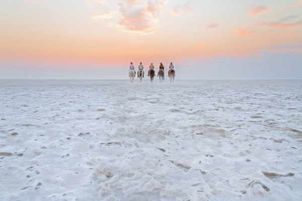 Horse riding on white salt pan with pink sky