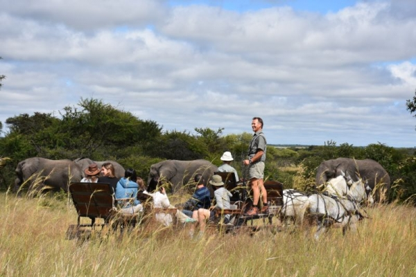 Group of people on horse carriage in Zimbabwe