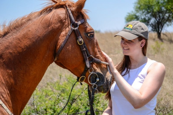 Girl with chestnut horse