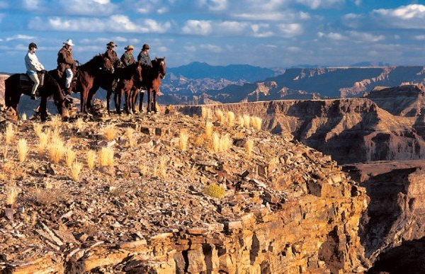 Safari horses on edge of canyon
