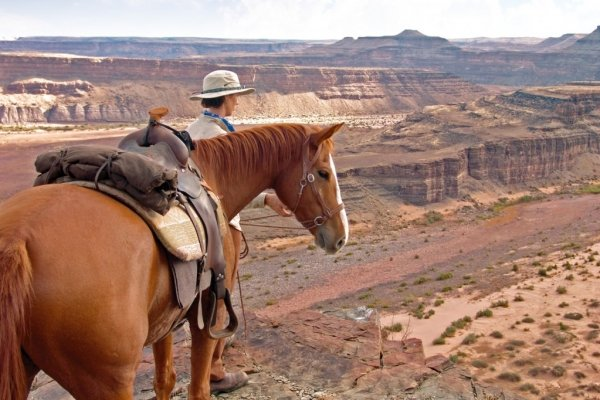 Horse and rider looking over the Fish River Canyon