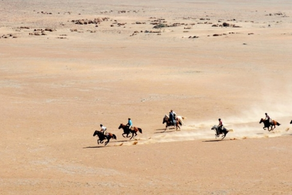 Safari horses galloping in desert