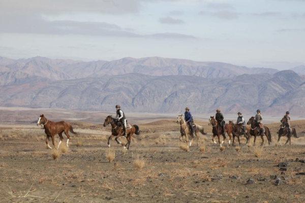 Horses galloping in the Namib Desert