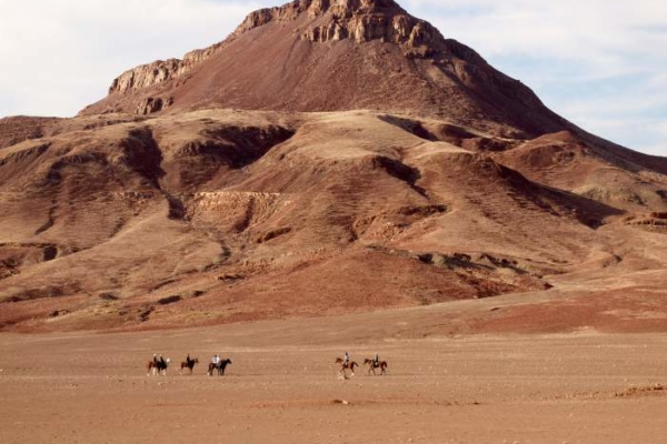 Horse safari in the desert