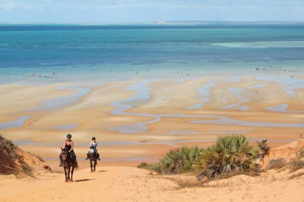 Horse riding on beaches towards ocean