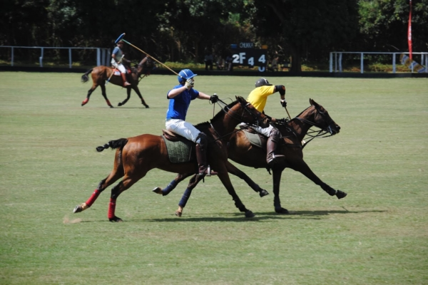 play-polo-on-banks-of-nile15