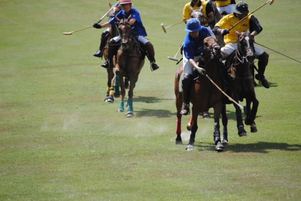 play-polo-on-banks-of-nile17