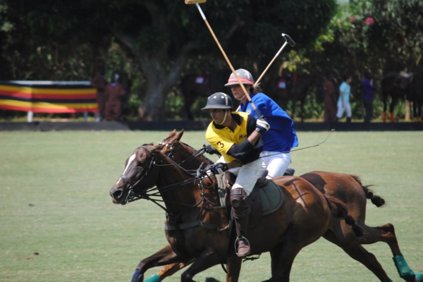 play-polo-on-banks-of-nile19